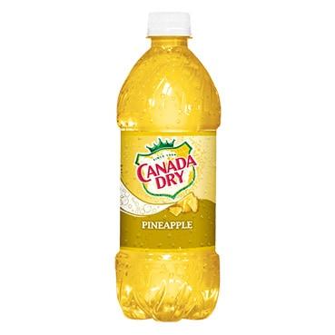 Canada Dry Pineapple Soda 591mL